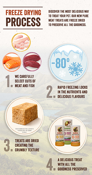 IAMS freeze drying process infographic